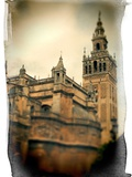 The Giralda Tower and the Cathedral (South-East View)  Seville  Spain