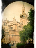 The Giralda Tower as Seen from Patio De Banderas Square  Seville  Spain