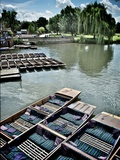 Punting Summer