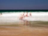 Summer Sands 3