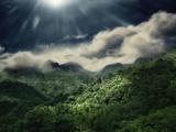 El Yunque National Park