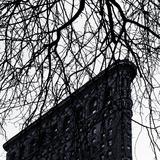 Flat Iron Building  Manhattan  New York City