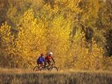 Couple Mountain Biking in Fall