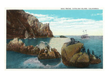 Santa Catalina Island  California - View of the Seal Rocks
