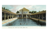 Miami  Florida - Hotel Royal Palm Swimming Pool Scene