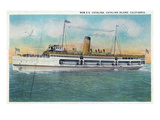 Santa Catalina Island  California - View of the New SS Catalina Steamer