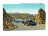 Santa Catalina Island  California - View of a Sightseeing Jaunting Car