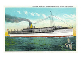 Santa Catalina Island  California - View of the Steamer Avalon