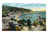 Santa Catalina Island  California - Panoramic View of Avalon and Bay