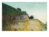 Santa Catalina Island  California - View of a Stagecoach Descending Down a Road