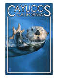 Cayucos  California - Sea Otter