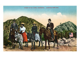 Mt Lowe  California - View of Hiking Group on Horseback at Summit