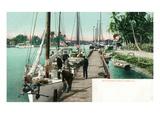 Miami  Florida - Docked Boats on the Miami River