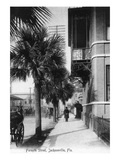 Jacksonville  Florida - View Down Forsyth Street
