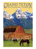 Grand Teton National Park - Barn and Mountains