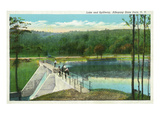 Allegany State Park  New York - View of the Lake and Spillway