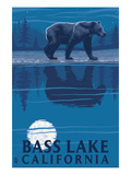 Bass Lake  California - Bear at Night