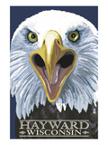 Hayward  Wisconsin - Eagle Up Close
