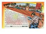 Two Gun Lover Storiette  Cowboy at a Bar