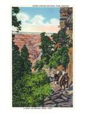 Grand Canyon Nat'l Park  Arizona - Men on Burros on the Bright Angel Trail
