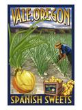 Vale  Oregon - Spanish Sweets Onion Harvest
