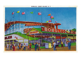 Coney Island  New York - View of the Bobsled Ride