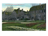 Rochester  New York - Portsmouth Terrace Tulips in Bloom