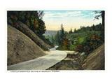 Oregon - Coquille-Marshfield Coastal Highway Section