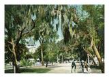 Daytona Beach  Florida - Ridgewood Ave and Hotel View