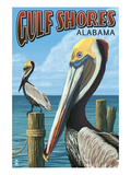 Gulf Shores  Alabama - Brown Pelican
