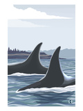 Orca Whale Fins