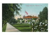 Pasadena  California - Scenic View Down Orange Grove Avenue