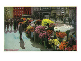 San Francisco  California - View of Street Flower Vendors
