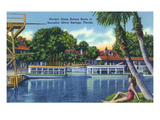 Silver Springs  Florida - View of Electric Glass Bottom Boats