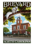 Brevard  North Carolina - Courthouse and White Squirrel