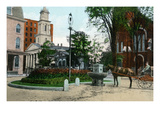 Auburn  New York - View of Public Watering Trough