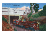 Roanoke  Virginia - Mill Mountain Children's Zoo Train the Zoo Choo