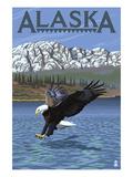 Alaska - Eagle Diving