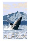 Alaska - Humpback Whale
