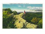 North Carolina - Blue Ridge Parkway  Scenic View at Blowing Rock