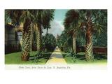 St Augustine  Florida - Ponce De Leon Outer Court Scene