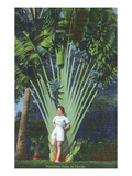 Florida - Woman Posing by Travelers Palm
