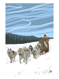 Dogsledding Scene
