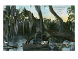 Florida - Boat Scene in the Everglades