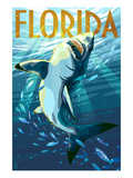 Florida - Stylized Shark