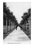 Palm Beach  Florida - Walking Down Ocean Avenue
