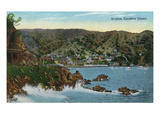 Santa Catalina Island  California - Panoramic View of Avalon
