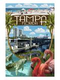 Tampa  Florida - Montage