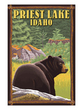 Priest Lake  Idaho - Bear in Forest