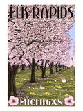 Elk Rapids  Michigan - Cherry Blossoms